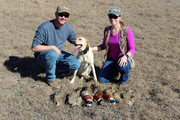Pheasant Hunt with Dog in November
