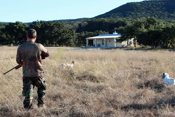 Pheasant Hunting Near the Creek Lodge at Rancho Madrono