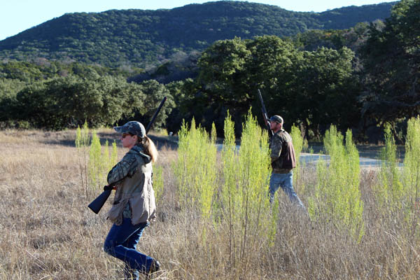 Pheasant Hunts in Hill Country