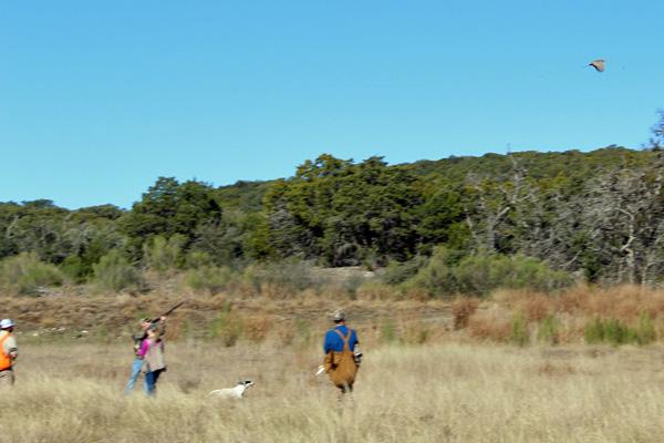 Pheasnt Shooting Near San Antonio Texas